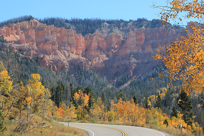 Cedar Breaks,Autumn,Wood,Road
