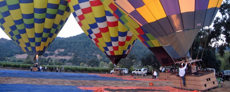 Hot Air Ballons,Sunrise,Napa Valley