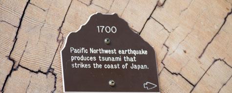 Jordskælv,Skilt,1700,Douglas Fyr