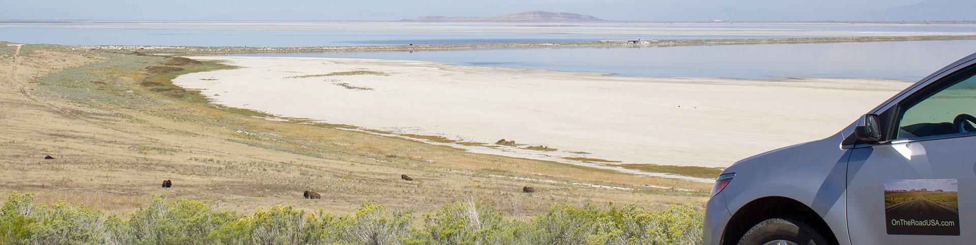 Antilope Island,Bison,Udsigt,Bil,Vand