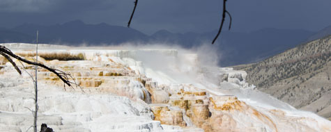 Mammoth Hot Springs,Canary Spring,Yellowstone National Park