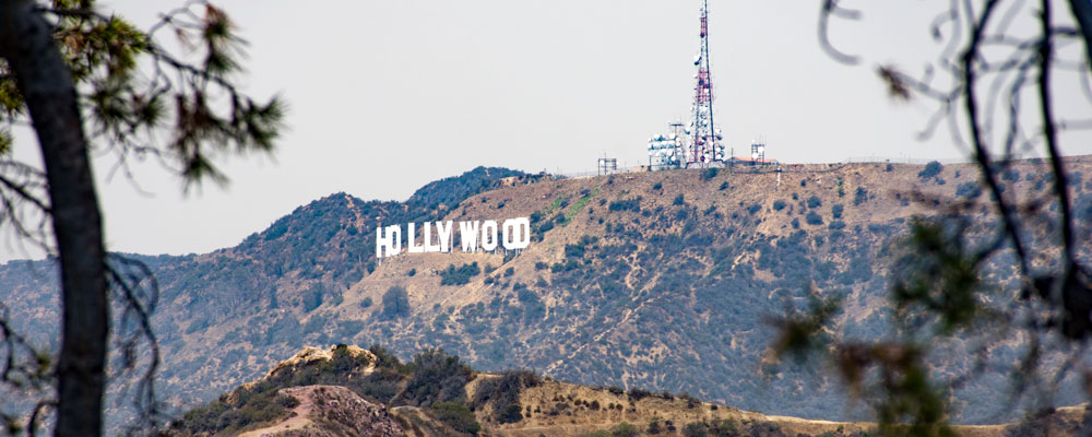 Hollywood skilt,Træer,Griffith Park