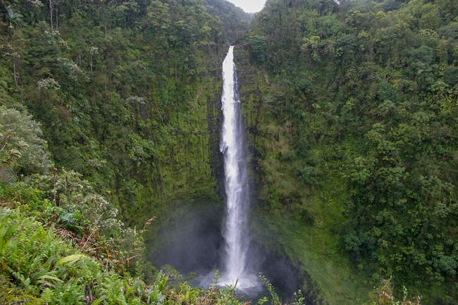 Akaka Falls,Big Island Hawaii,Vandfald,Træer