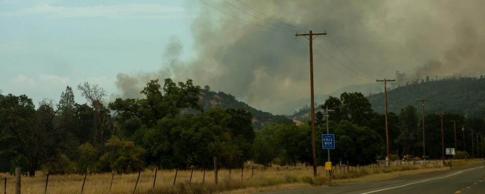 Naturbrand,Californien,Røg,Bakker,Skov