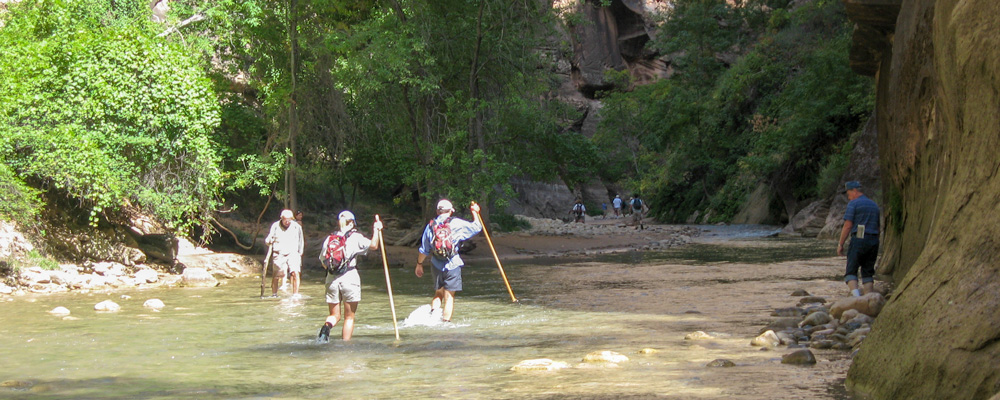 The Narrows,Zion National Park,Vand,Folk,Vandre,Klippe